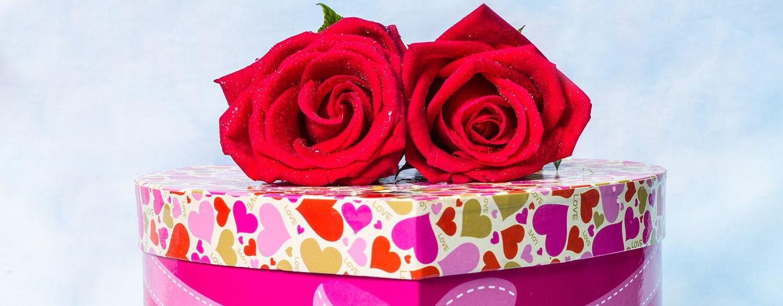 الورود والأزهار من أجمل الهدايا التي تقدم في المناسبات