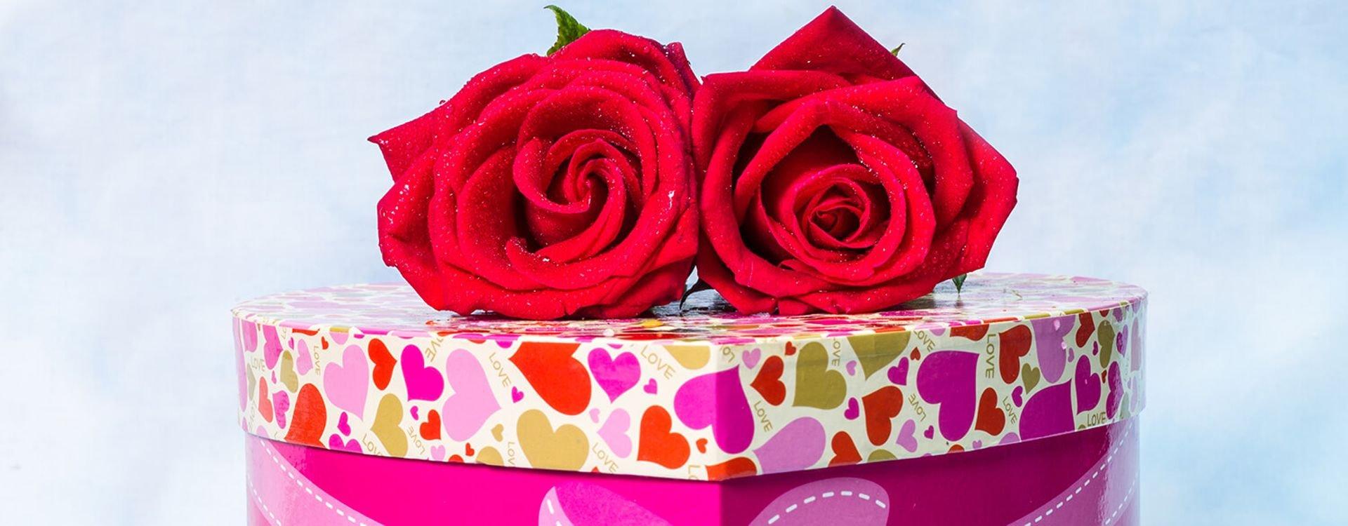 5c84a1cd4f292 الورود والأزهار من أجمل الهدايا التي تقدم في المناسبات