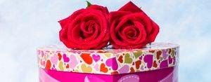 معاني ألوان الأزهار والورود للهدايا