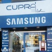 Cupra Link