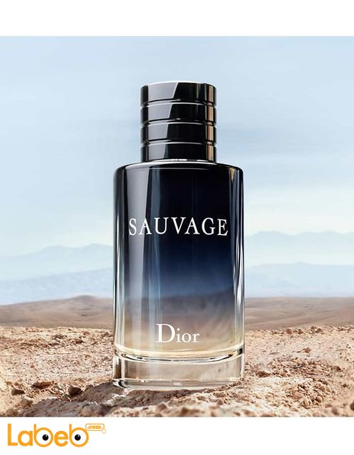 Dior Perfume Suitable For men 100 ml SAUVAGE Model