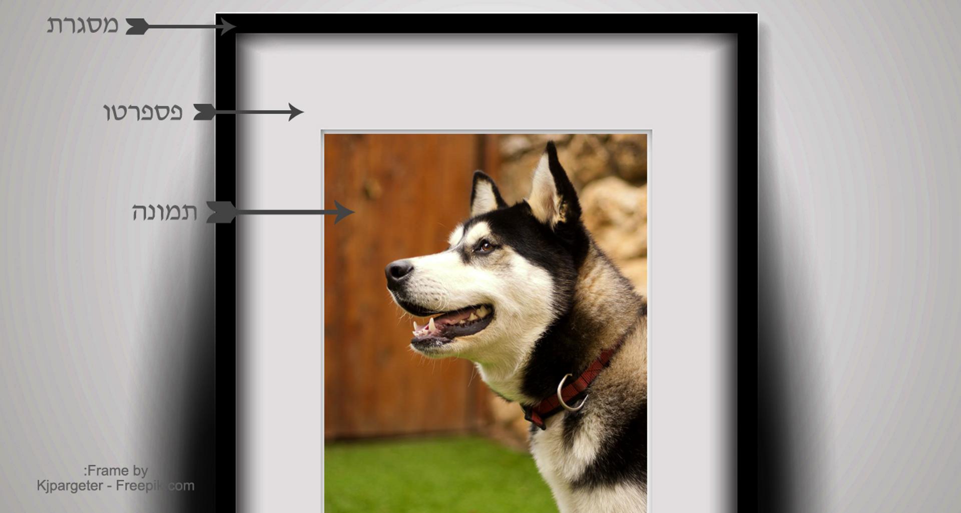 =מסגרת תמונה איכותית דגם FR9305, כולל הדפסת תמונה.