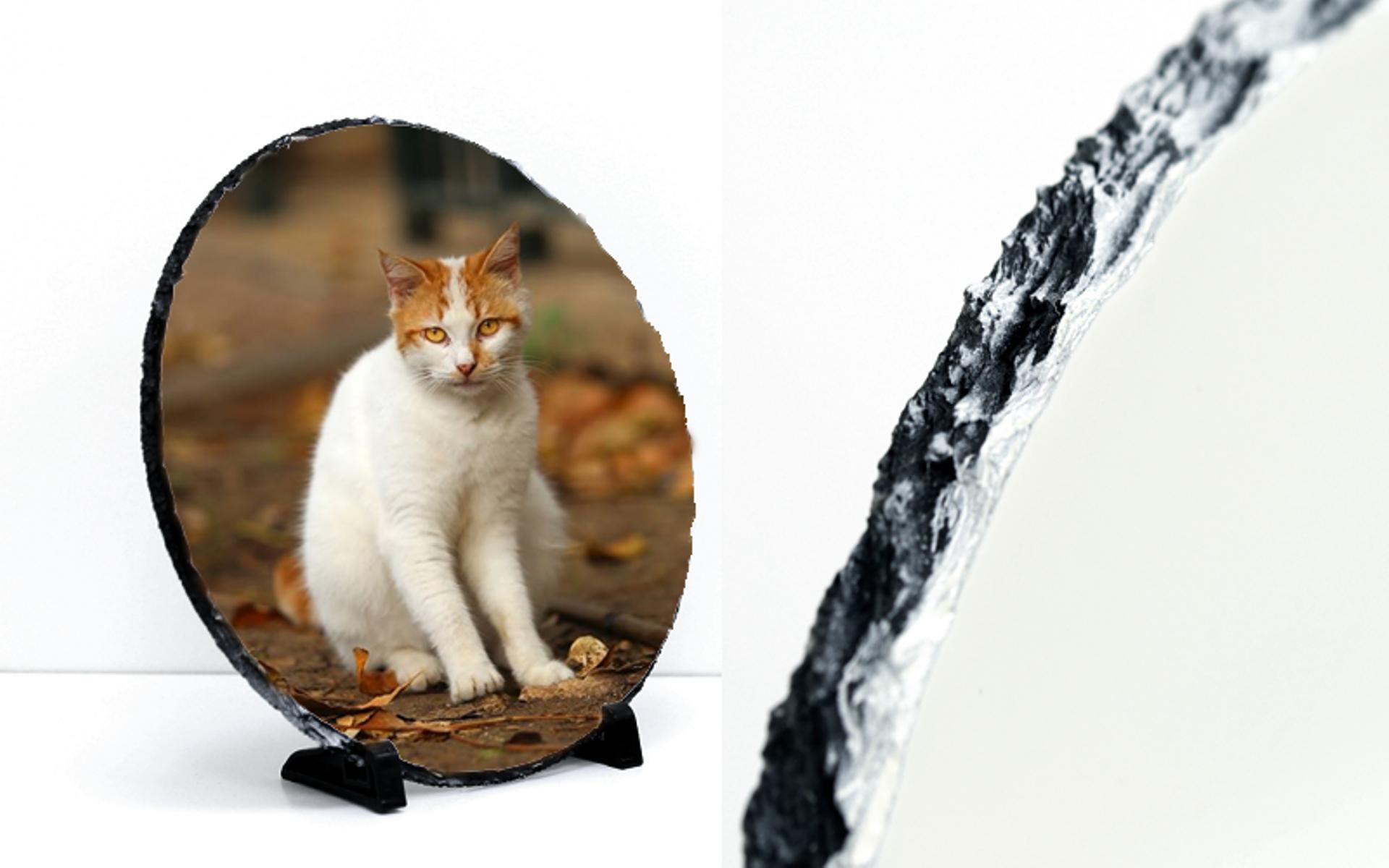 מגן עיגול איכותי מאבן בזלת יוקרתי  עם תמונה באיכות פוטו גודל ענק  28 ס