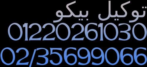 رقم تليفون صيانة بيكو الجيزة