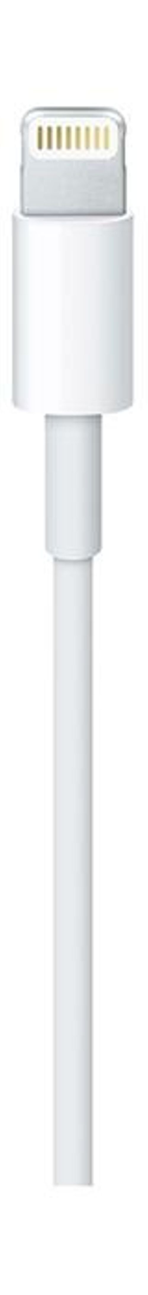 Apple USB Lightning Cable MD818ZM/A 1m White color