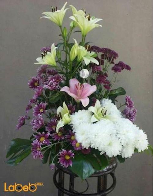بوكية ازهار زهرة ليليوم زهرة كريز نبتة القفص الصدري بنفسجي ابيض