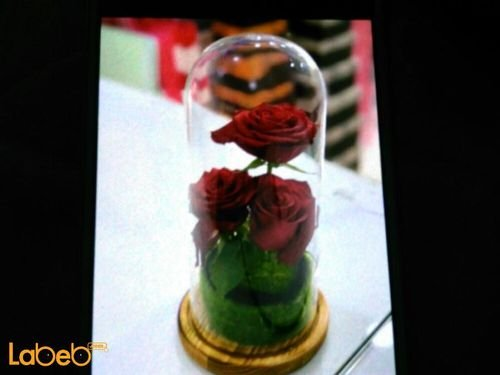Natural flowers vase 3 red flowers wooden base