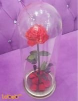 Red flowers with special Vase Stay for a year Nice design