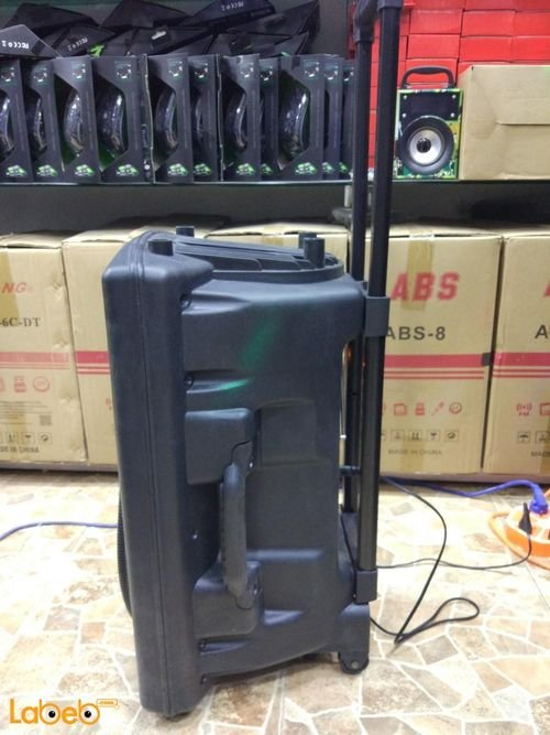 Ailiang portable speaker Bluetooth FM Radio F14K-DT