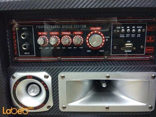 ABS DJ Speaker 10inch 99000W Black USB/SD Port