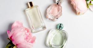اختيار أجمل عطر نسائي للمناسبات من أفضل الماركات في السعودية