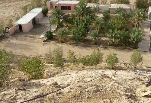 مزرعة للبيع 10000 متر مربع، العمارية، الرياض