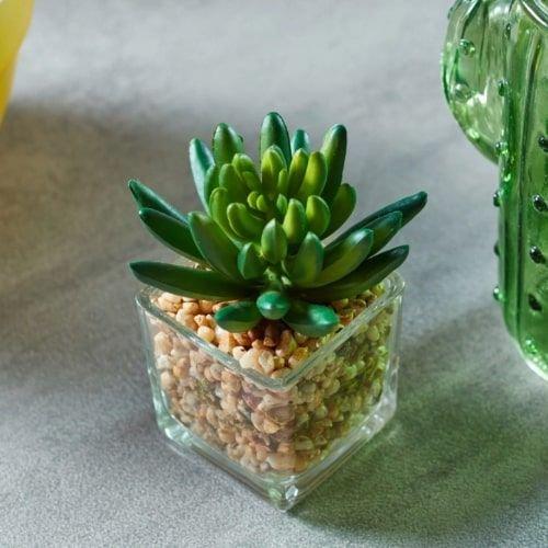 نبات زينة صناعي في إناء زجاجي من باسادينا، أخضر
